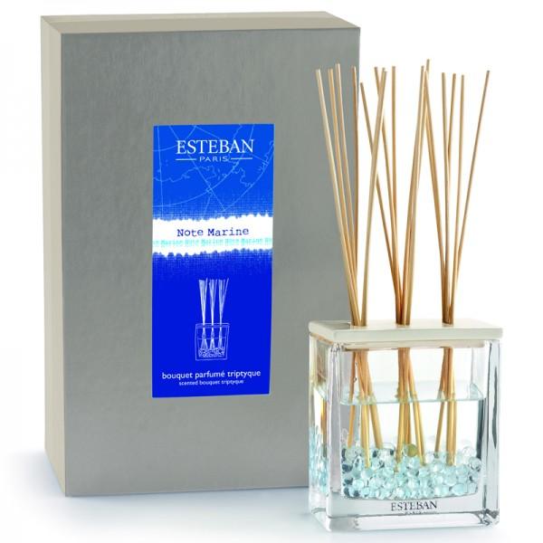 Estéban Note Marine - bouquet parfumé triptyque