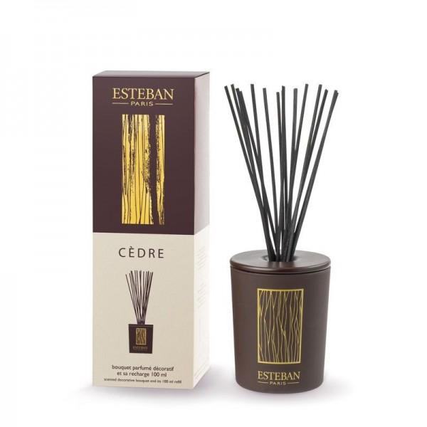 Estéban Cedre Diffuser - bouquet parfumé décoratif
