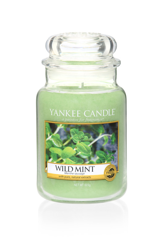 yankee candle wild mint. Black Bedroom Furniture Sets. Home Design Ideas